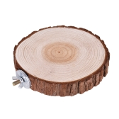 Akcesoria do klatek dla ptaków Pet Round Wooden Coin Platforma do skoków Chew Toy for Parrot Parakeet Budgie Cockatiel Squirrel Hamster Totoro