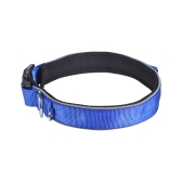 Strong Durable Dog Collar DuStrong Durable Dog Collar Dual D-ring Nylon Fasten Tape Length Adjustable Comfortable Neck Pet Collars for Small Large Medium Dogs