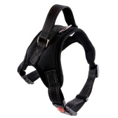 Adjustable Reflective Harnesses