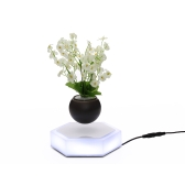 Suspensión magnética Levitating Air Bonsai Pot LED Floating Plant Pot Levitación giratoria para la oficina en casa decoración enchufe de la UE