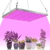 LED crece la luz