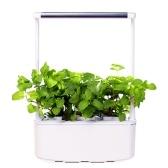 Sistema de cultivo hidropónico con LED Grow Light