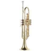 ammoon Trumpet Bb B Flat Brass Gold-painted Exquisite Durable Musical Instrument
