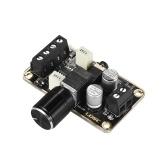 Digital Audio Amplifier Module