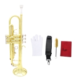 Tromba Bb B Flat Brass Exquisite con bocchino di pulizia Brush Cloth Guanti Strap