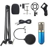 Kit microfono sospensione professionale BM800