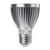 ランプ電球は光を育てる