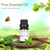 10 ml Mint Pure Essential Oil