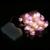 3m / 10ft 30 LED Fairy String Light con telecomando
