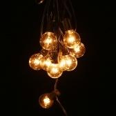 Tomshine AC230V G40 Globe Tungsten Incandescent Bulb Lamp 25 Pack
