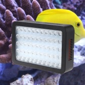 165W 55 LEDs de luz del acuario regulable espectro completo de los pescados del filón coralino del tanque de agua dulce del agua salada de iluminación azul y blanco