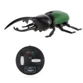 Infrared Remote Control Simulation Beetle Mini RC Animal