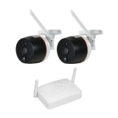 4CH Wifi Mini NVR Kit Video Surveillance  with 2PCS 1080P Wireless IP Camera Set