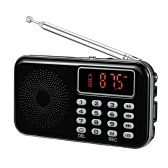 Y-619 Mini FM Radio Digital Portable 3W Speaker MP3 Audio Player with 2 Inch Display Screen Support USB Drive TF Card Play Recording AUX-IN Earphone Out