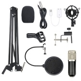 BM800 Condenser Microphone Lit Pro Audio Studio Recording & Brocasting Adjustable Mic Suspension Scissor Arm Pop Filter Black+Silvery