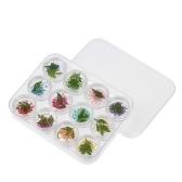 3D настоящие сушеные цветочные украшения для УФ-гель 12 сетки для ногтей Советы маникюра для ногтей
