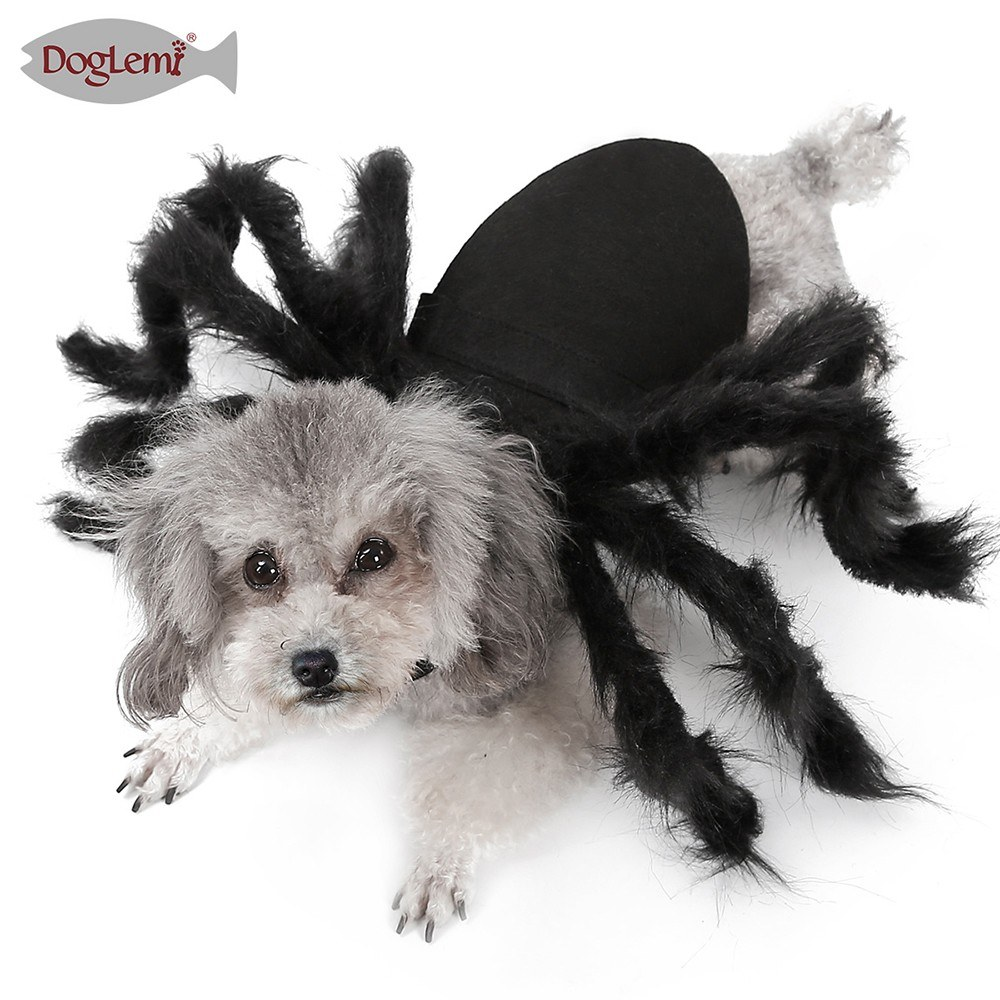 Cat Costume Halloween Spider Pet Costumes Pet Apparel for Small Cats and Dogs