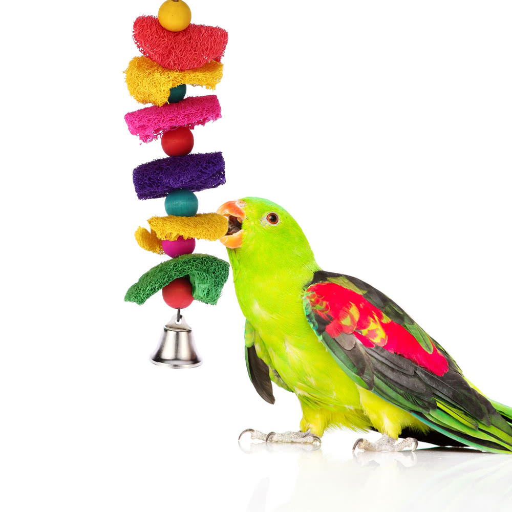 Small Toy Parrots : Colorful natural loofah bird parrot cage toys with bell