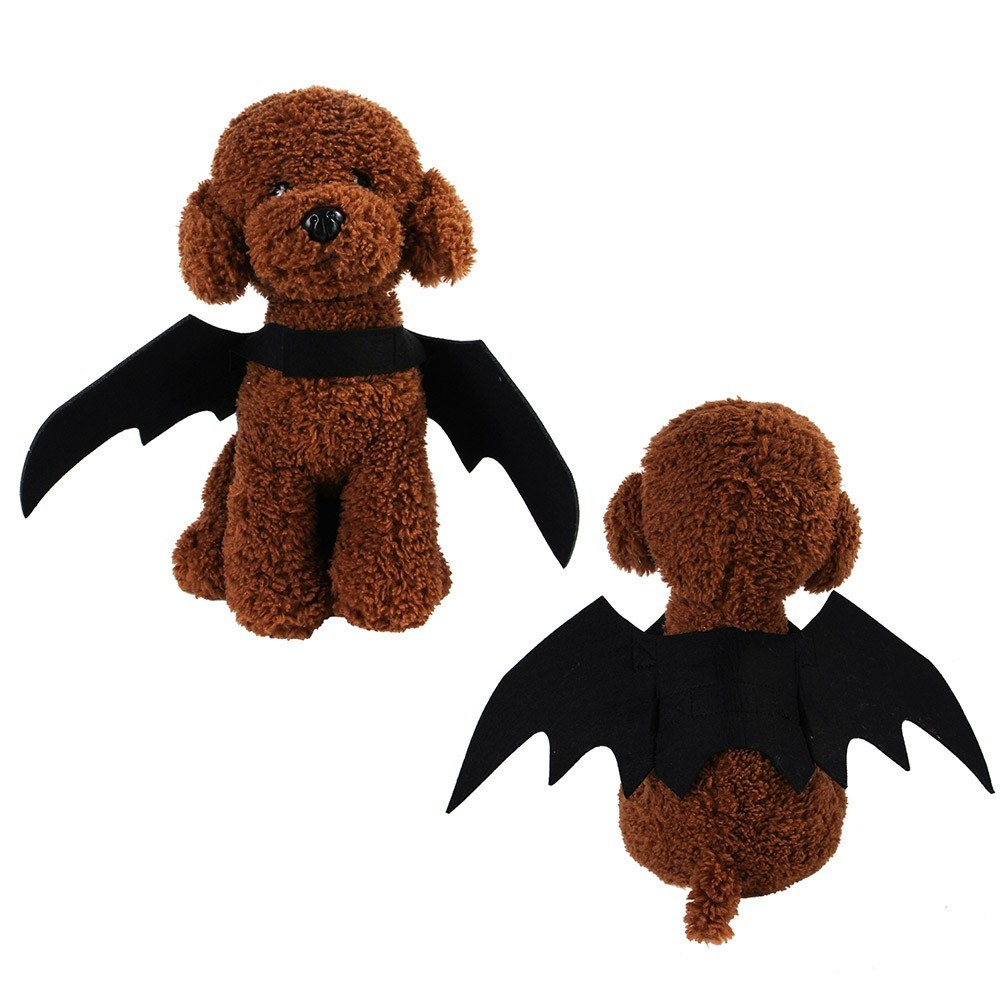 $2.69 (reg $10) Halloween Pet.