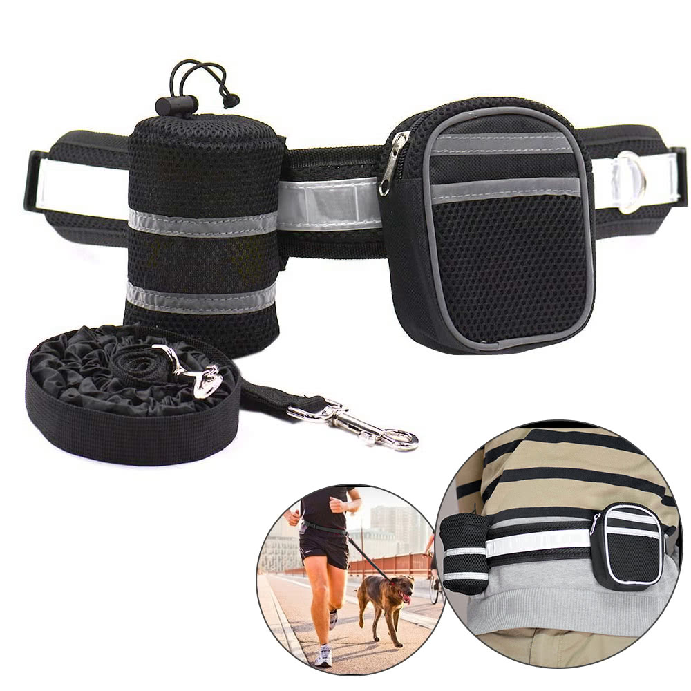 Black Dog Hands Free Training Belt
