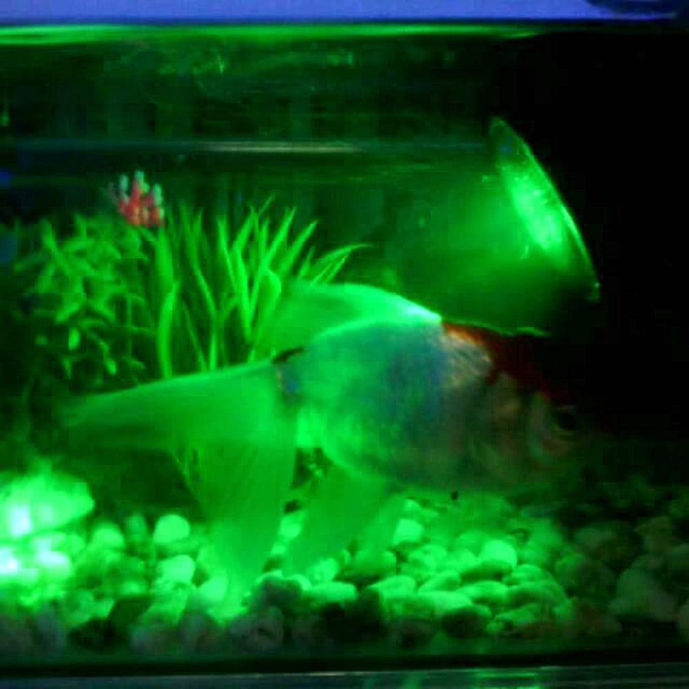Underwater 144leds 6w 12v waterproof ip68 submersible 4 for Pond aquarium