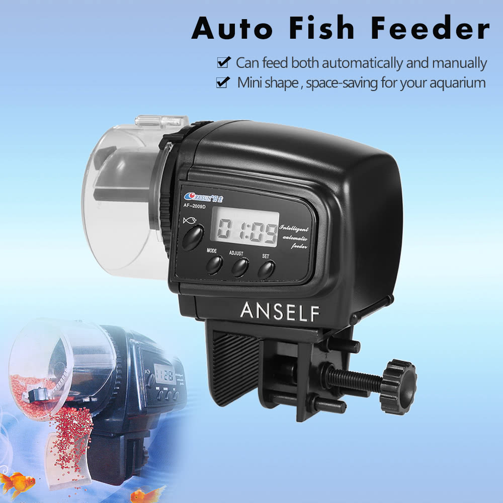 Auto fish feeder sales online tomtop for Best automatic fish feeder