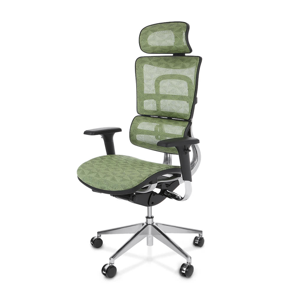 Ikayaa Multi Function Adjustable Mesh Ergonomic Office Chair Swivel Executive Computer Desk Chair W Lumbar Support Tilt Slide Headrest Pass Ansi Bifma Standard