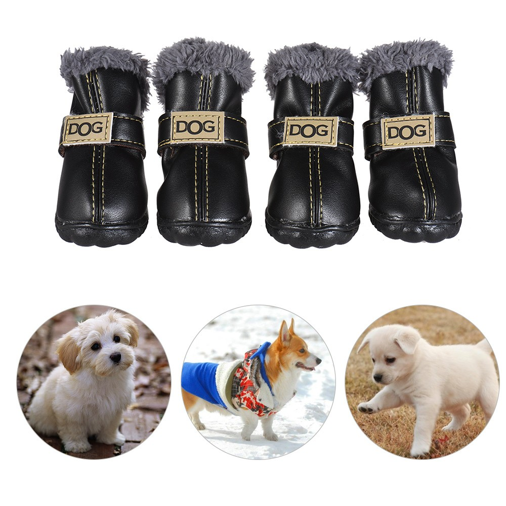 Top Paw Dog Boots Review