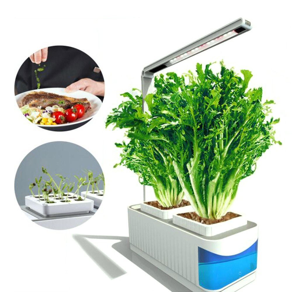 4325-OFF-Multifunctional-Smart-Indoor-Herb-Gardening-Planter-Kitlimited-offer-244099