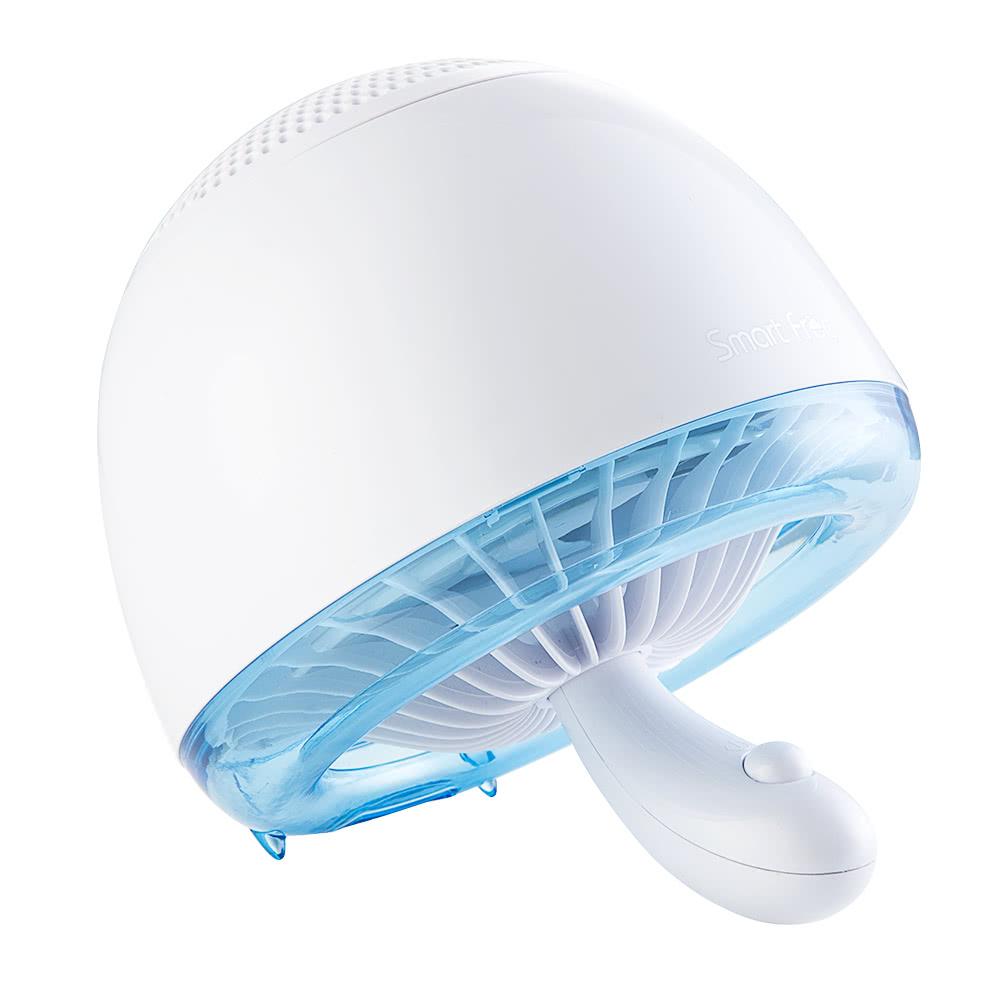 moskito killer lampe ungiftig photokatalysator m cken uv licht lampe repeller trap downdraft bug. Black Bedroom Furniture Sets. Home Design Ideas