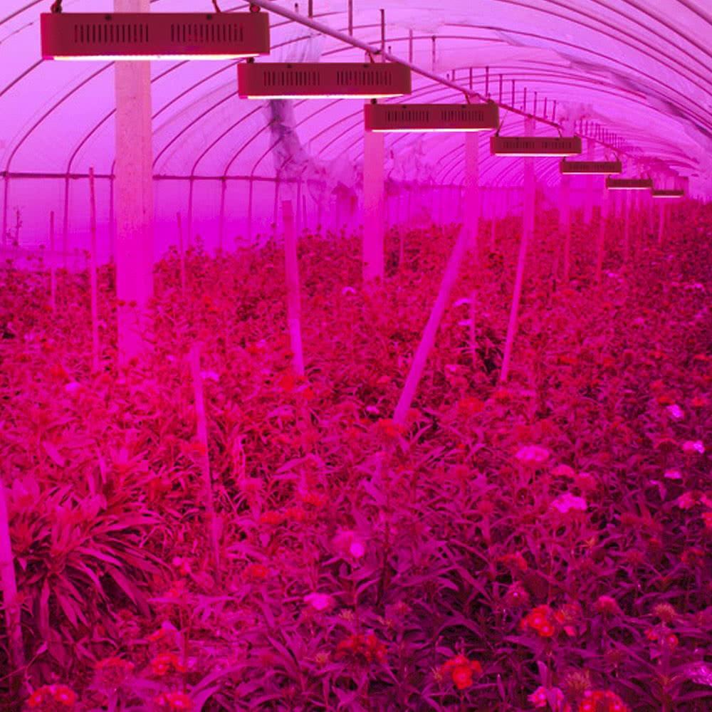 lixada 100 leds 300w led wachsen volles spektrum f r indoor gew chshaus gartenbau pflanze. Black Bedroom Furniture Sets. Home Design Ideas
