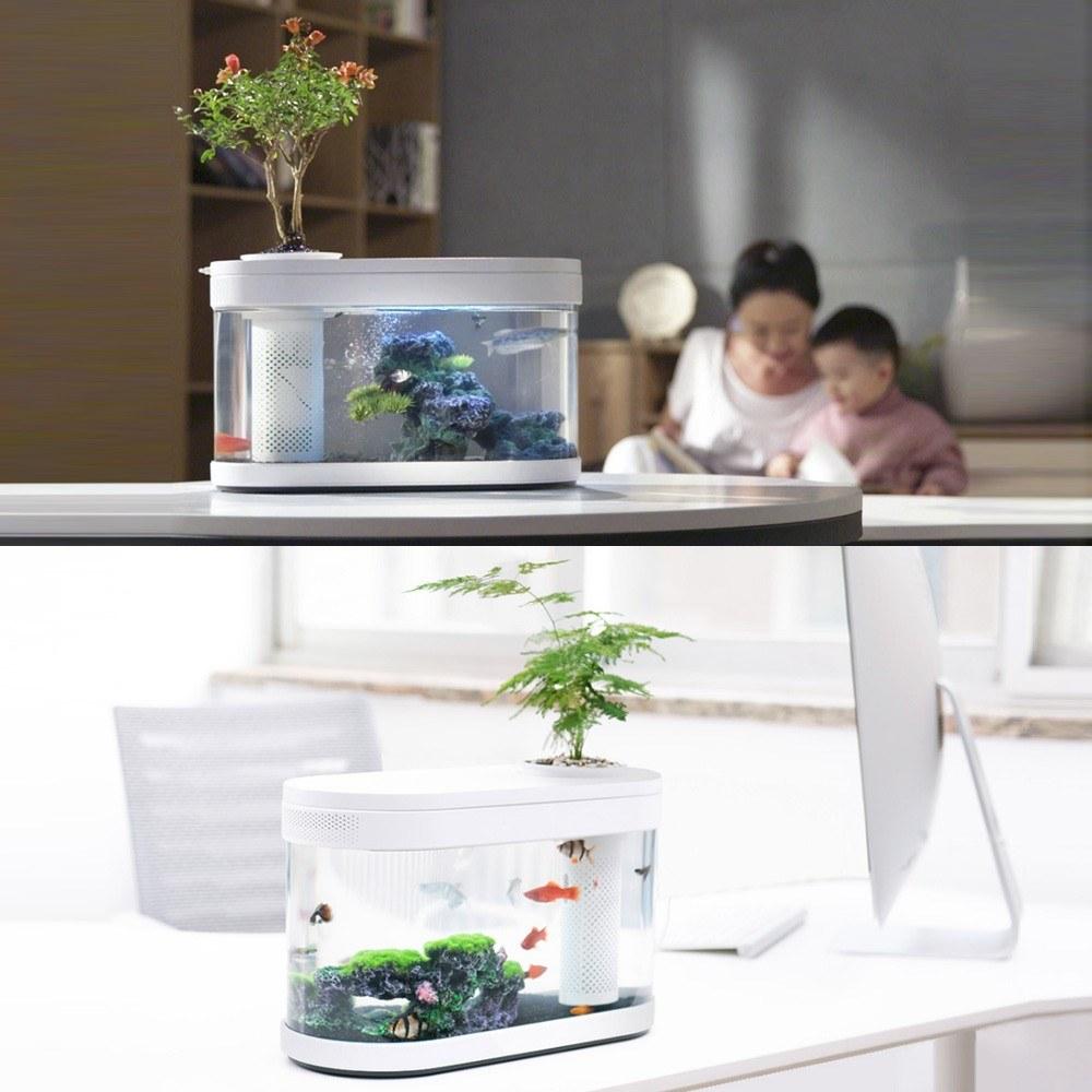 Youpin Desgeo ökologisches Goldfischbecken Wohnzimmer Home Desktop Kleines Symbiosesystem Blume Muzy Lazy Aquarium Led Bunte Fischbox Mit Sauerstofffilterpumpenset
