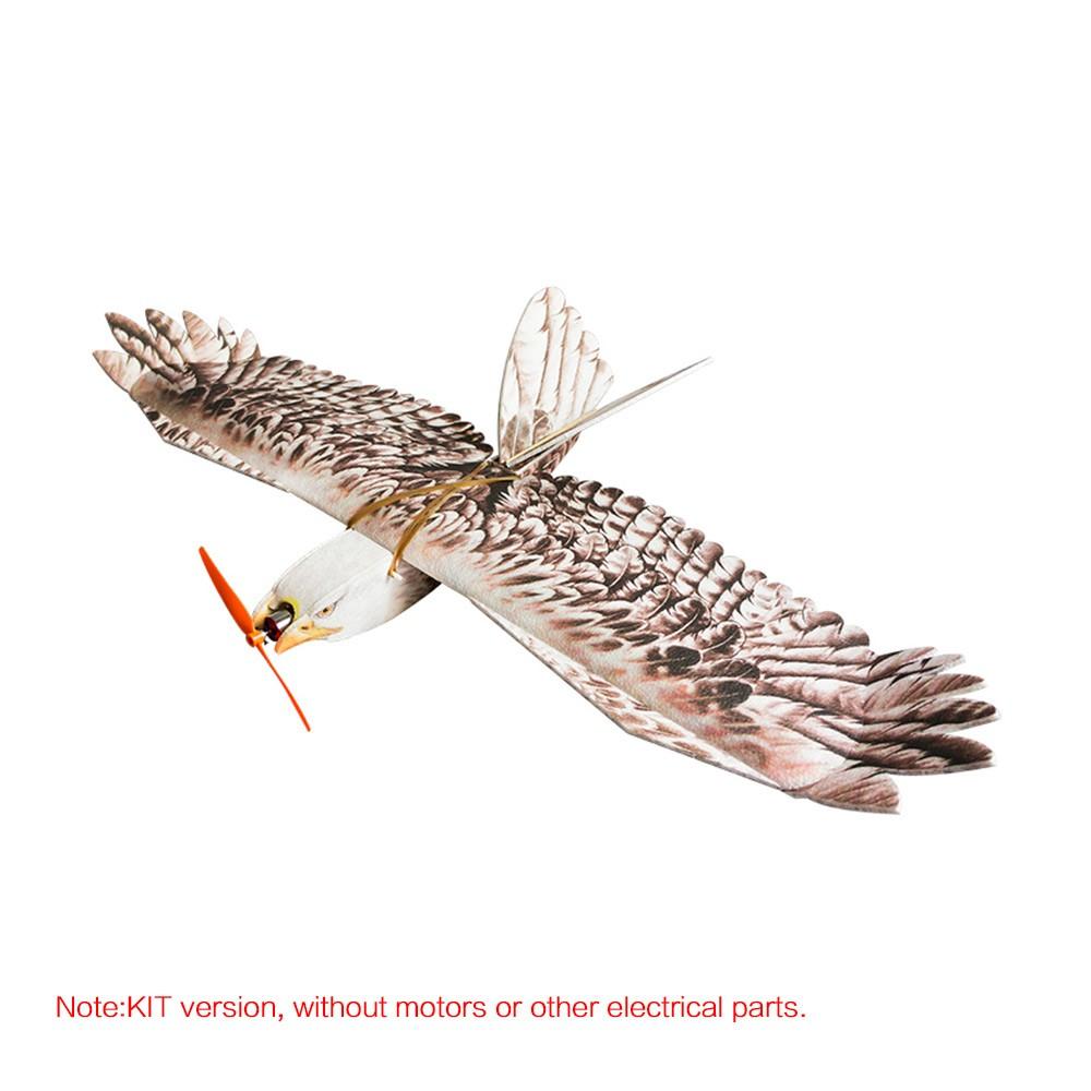 DW HOBBY Biomimetic Eagle EPP Mini Slow Flyer 1200mm Wingspan RC Airplane KIT