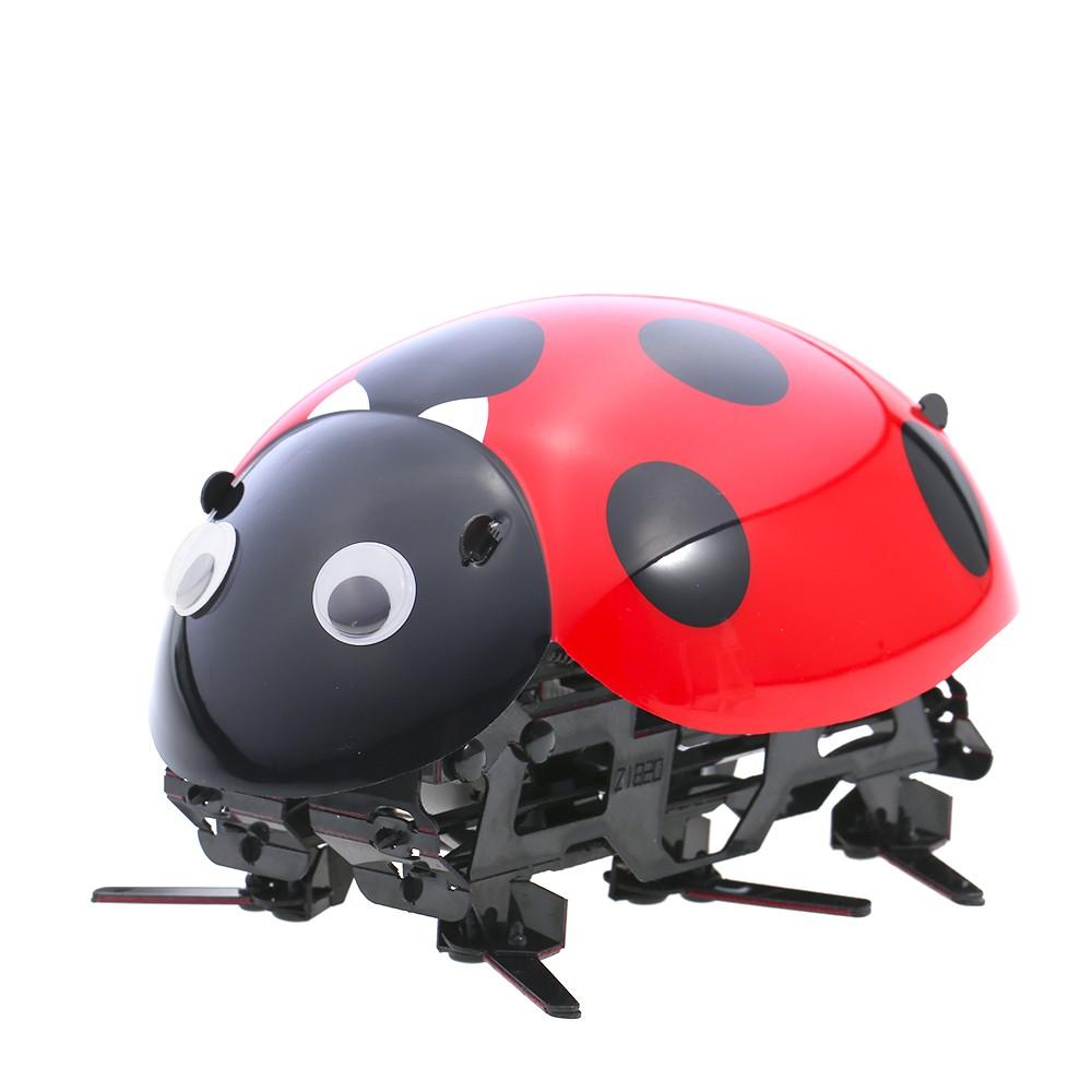 Drôle Rc Jouet Insectes Fil Voitures Car Véhicules Bionic Jouets Coccinelle Électronique Diy Intelligent Robot Télécommande Sans Pet Racing shQdCtrx