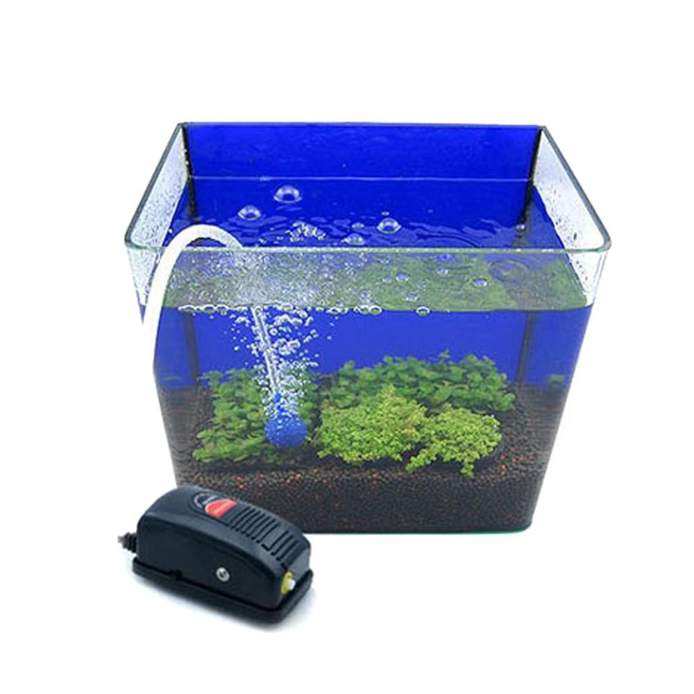 как правильно поставить в аквариум компрессор фото забавно мило