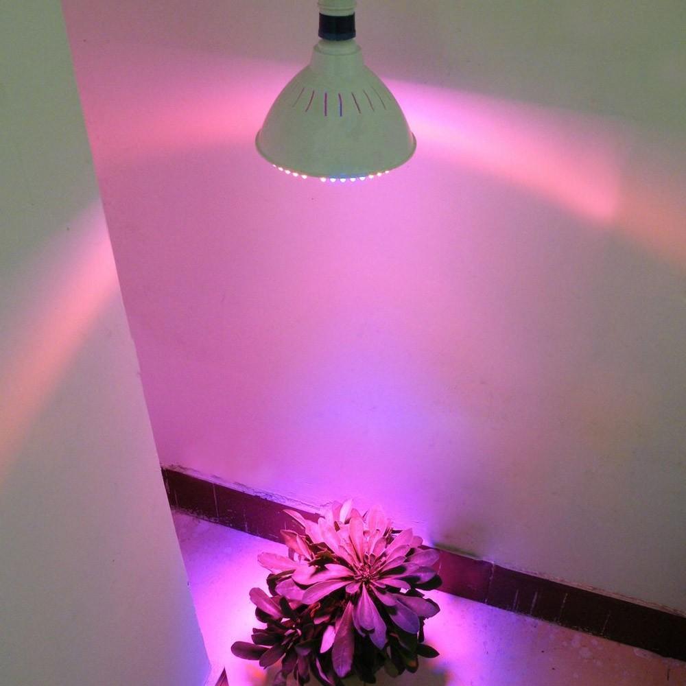 E27 38led 2 2w plantes poussent ampoule jardin for Jardin hydroponique