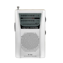 audiomax sr 101 fm am 2 band radio silver - WHOLECHEAP