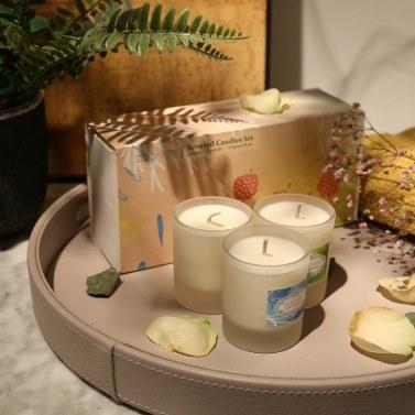 Tooarts | Duftkerzen | 100% natürliches Sojawachs | Lange letzte saubere Verbrennung Exquisite Geschenkverpackung | Charmanter Duft | Luft auffrischen | Perfektes Geschenk | Wohnkultur