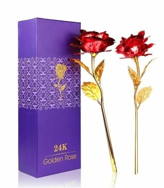 2Pcs Gold überzogene Rose Flower 24K Gold überzogene Valentinstag-Geschenk-letzte für immer Goldfarbe