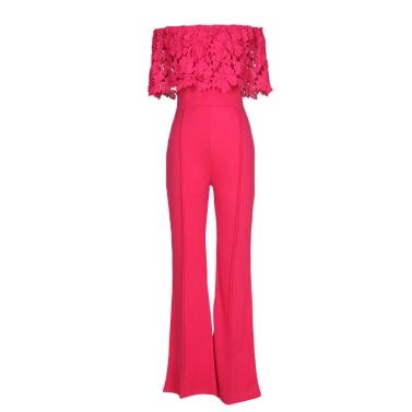 Frauen-reizvoller Overall-Spitze weg von der Schulter-Bodysuit-Ansatz-Hals-breiten Bein-Hosen-Overalls