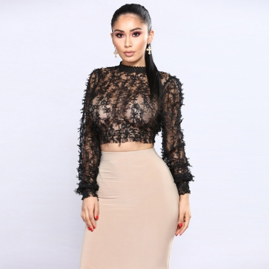 Sexy Frauen Sheer Spitze Crop Top High Neck Langarm Mesh Slim Bluse T-Shirt Schwarz