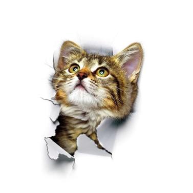 鮮やかな3D猫の壁のステッカー
