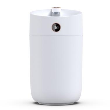 3L Mist Humidifier Diffuser