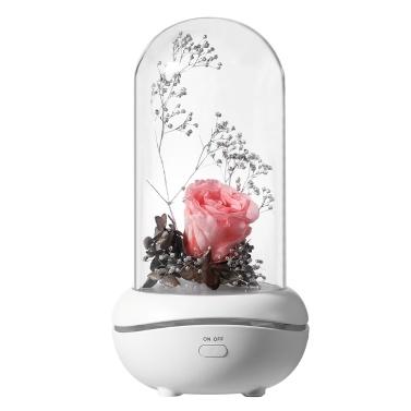 Mechine preservado da aromaterapia da lâmpada de Rosa