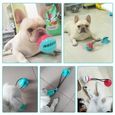 Pet Dog Molar Bite Chew Toy Dog Rope Pull Food Dispenser Interactive Toy with Suction Cup Bell for Pulling Chewing Teeth Cleaning