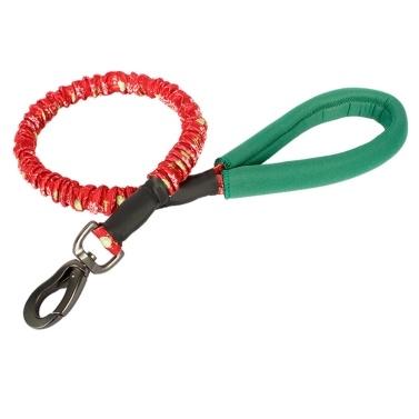 Dog Leash Dog Training Leash