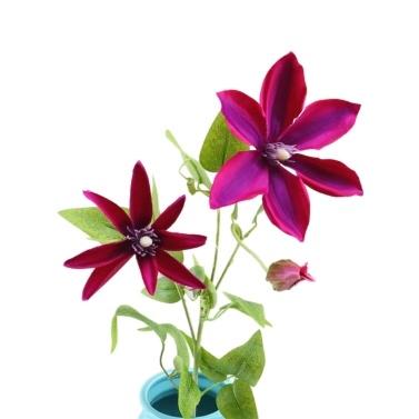 Künstliche Trident Lotus Blume Simulation Seide Floral