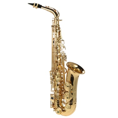 ammoon bE Alto Saxphone Brass Lacquered Gold E Flat Sax 802 Key Type Woodwind Instrument with Cleaning Brush Cloth Gloves Cork Grease Strap Padded Case