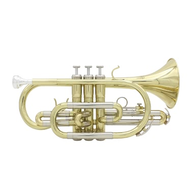 ammoon Professional Bb Flat Cornet Brass Instrument with Carrying Case Gloves Cleaning Cloth Brushes