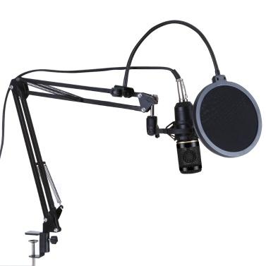 Microfono a sospensione professionale BM800